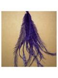 10 шт. Фиолетовый цвет. Перо американского петуха 10-15 см. 2-х цветное