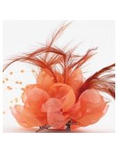 ОО-2. Оранжевый цвет. Заколки с перьями птиц и броши