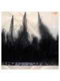 1 м. Черный цвет. Тесьма из перьев 6-11 см