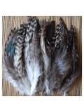 507. 20 шт.  Серый цвет. Перья американского петуха 6-10 см
