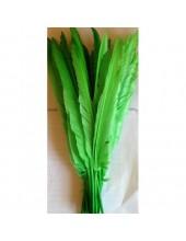 1 шт. Зеленый цвет. Гусиное перо 30-40 см