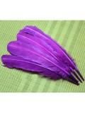 1 шт. Фиолетовый цвет. Гусиное перо 25-30 см