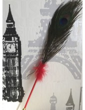 В-3. Красный цвет. Ручка с перьями павлина