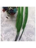 Ш-12. 1 шт. Нефрит цвет. Гусиное перо ручка