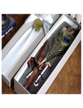 Ф-6. Ручка с чернилами перо птиц