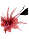 СС-5. Оранжевый цвет. Заколки из перьев птиц для волос и броши