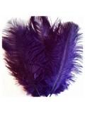 1 шт. Фиолетовый цвет. Перо страуса 15-20 см