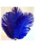 1 шт. Синий цвет. Перо страуса 15-20 см