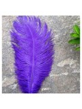 1 шт. Фиолетовый цвет. Перо страуса 20-25 см