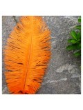1 шт. Оранжевый цвет. Перо страуса 20-25 см