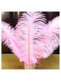 1 шт. Розовый цвет. Перо страуса 30-35 см