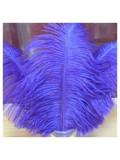 1 шт. Синий цвет. Перо страуса 30-35 см