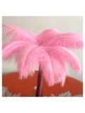 1 шт. Розовый цвет. Перо страуса 35-40 см