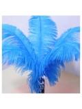 1 шт. Голубой цвет. Перо страуса 40-45 см