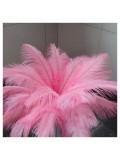 1 шт. Розовый цвет. Перо страуса 40-45 см