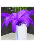 1 шт. Фиолетовый цвет.  Перья страуса 45-50 см