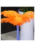 1 шт. Оранжевый цвет.  Перья страуса 45-50 см