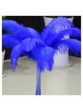 1 шт. Синий цвет.  Перья страуса 45-50 см