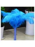 1 шт.  Голубой цвет.  Перья страуса 45-50 см