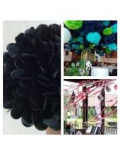1 шт. Черный цвет. Бумажные цветы. Пионы. Объем 10 см.
