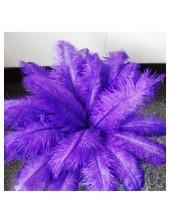 1 шт. Синий цвет. Перья птиц страуса 50-55 см