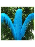 1 шт. Голубой цвет. Перья птиц страуса 60-65 см