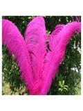 1 шт. Фуксия цвет. Перья птиц страуса 60-65 см