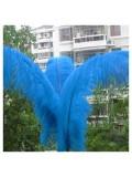 1 шт. Голубой цвет. Перья птиц страуса 65-70 см