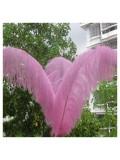 1 шт. Розовый цвет. Перья птиц страуса 65-70 см
