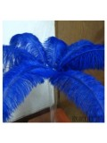 1 шт. Синий цвет. Перья птиц страуса 70-75 см
