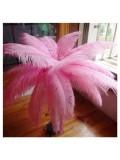 1 шт. Розовый цвет. Перья птиц страуса 70-75 см