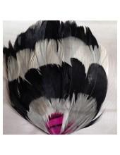 311. Брошь из перьев птиц 8-12 см.