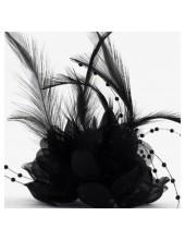 ОО-2. Черный цвет. Заколки с перьями птиц и броши