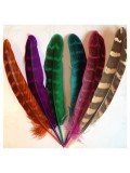 20 шт. Микс цвет. Перья фазана 13-15 см