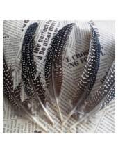 10 шт. Черный с белым. Перья фазана 15-20 см. В крапинку