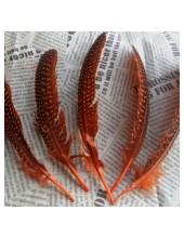 10 шт. Оранж с черным. Перья фазана 15-20 см. В крапинку