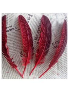 10 шт. Красный с черным. Перья фазана 15-20 см. В крапинку