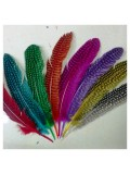 10 шт. Микс цвет. Перья фазана 15-20 см. В крапинку