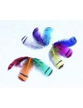 Перья фазана 3-6 см. Цветные перья