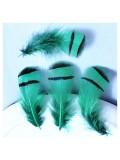 10 шт. Зеленый цвет. Перья фазана 3-6 см. Цветное перо