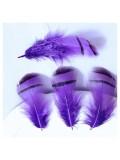 10 шт. Фиолетовый цвет. Перья фазана 3-6 см. Цветное перо