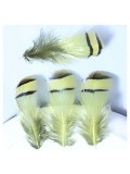 10 шт. Желтый цвет. Перья фазана 3-6 см. Цветное перо