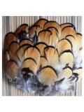 885. 10 шт. Перья фазана 5-7 см.