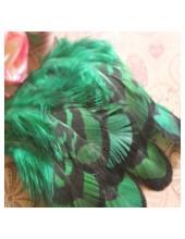 10 шт. Зеленый цвет. Перья фазана 4-9 см.