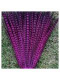 1 шт. Фуксия цвет. Перья фазана 50-55 см. Цветное