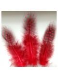 20 шт. Красный цвет. Цесарка 6-12 см. Горошек