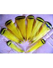 10 шт. Желтый цвет. Перо фазана 6 см. С полосками