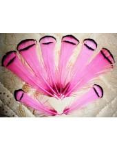 10 шт. Розовый цвет. Перо фазана 6 см. С полосками