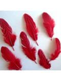 10 шт. Красный цвет. Перо фазана 7-10 см. Коктейль