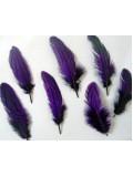 10 шт. Фиолетовый цвет. Перо фазана 7-10 см. Коктейль